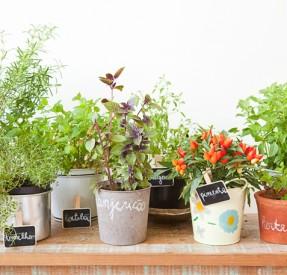 Como-Fazer-um-Jardim-ou-Horta-na-Varanda-de-Apartamento