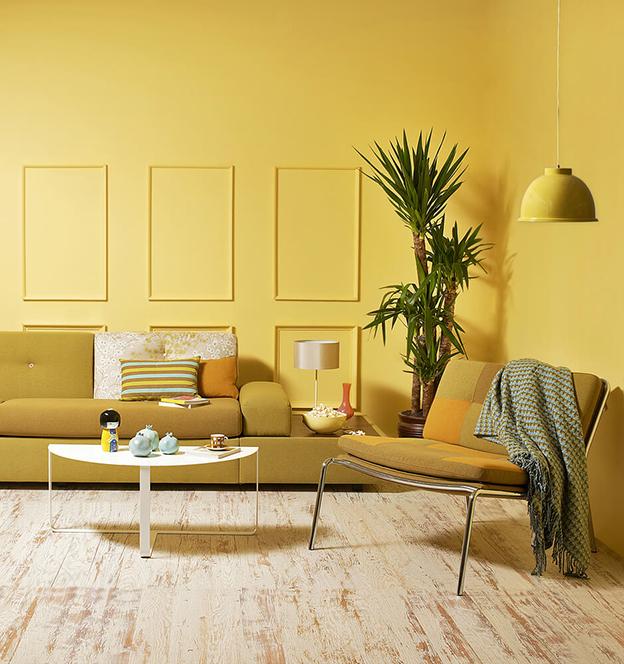 cor amarelo 1